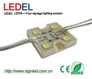 LED Module for Channel Letter Backlighting (LL-G12T1309X1P2)