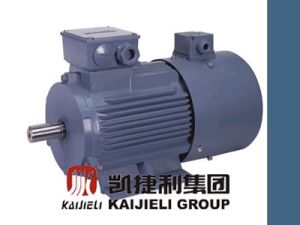 Vvvf Adjustable Speed Three-Phase Motor (YTSP SERIES) pictures & photos
