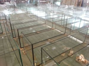 Custom High Quality Curve Ultra Clear Glass Aquarium pictures & photos