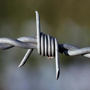 Barbed Wire/Plastic Covered Barbed Wire/ Razor Barbed Wire pictures & photos