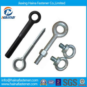 High Quality Stainless Steel 304/8.8grade Hot Galvanized/Black Drop Forged Lifing Eye Bolt/Swing Bolt (DIN580 DIN444 JIS1168) pictures & photos