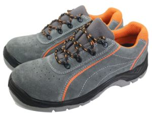 Blue Hammer Insole Safety Shoes pictures & photos