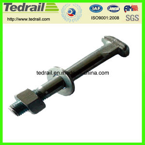 T Bolts for Spanish Market Rail Bolt and Clip Bolt pictures & photos