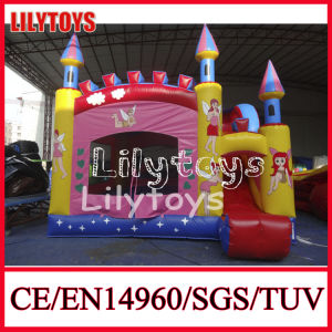 Special Portable Inflatable Bouncer Castle with Blower (J-BC-046)