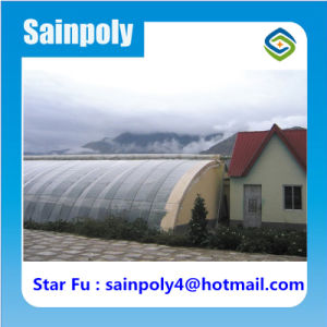 China Manufacturer Sainpoly Brand Solar Greenhouse for Tomato pictures & photos