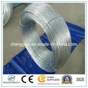 Hot Dipped Galvanized Steel Wire Factory pictures & photos