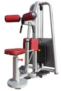 Fitness Equipment / Gym Equipment / Rotary Torso (SM20) pictures & photos