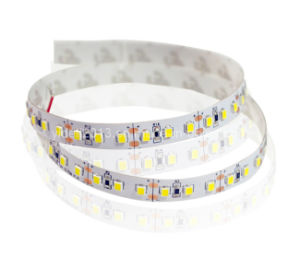 120 LED Per Meter 12 Volt 10mm 2835 SMD LED Flexible Strip Light pictures & photos