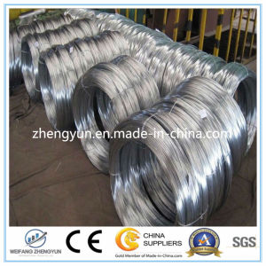 High Quality Galvanized Mild Steel Wire for Sale (BV Certification) pictures & photos