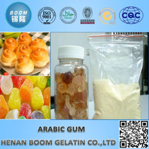 Best Quality Gum Arabic Powder Instant pictures & photos