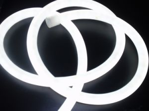 LED Neon Flex Rope Light--Lsn, White Color pictures & photos