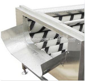 Gl-380 Turnip Washing Machine, Potato Washing Peeling Machine pictures & photos