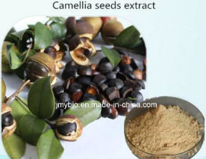 High Quality 60%~98% Tea Saponins Camellia Seed Extract for Skincare pictures & photos