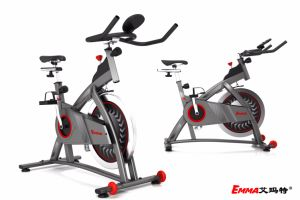 Exercise Bike Fitness Equipment (AM-S5210) pictures & photos