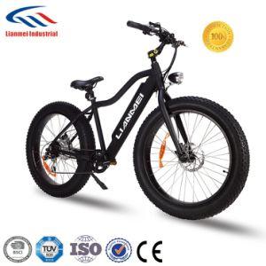 Fat Ebike Fat Tire Bike 2 Wheel pictures & photos