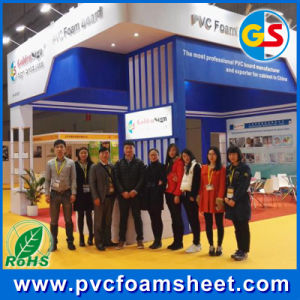 2017 Hot Sales Extruded Thick PVC Board with Good Chemical Resistance pictures & photos