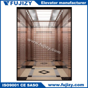 Villa Home Elevator on Sale pictures & photos