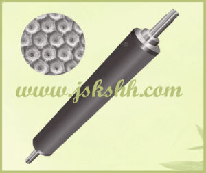 Plasma Spraying Ceramic Anilox Roll for Varnishing pictures & photos