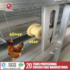 Broiler Poultry Houses H Type Chicken Battery Cage High Broiler Rate /Farm Equipment pictures & photos