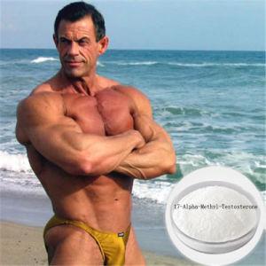 Methyltestosteron 17-Alpha-Methyl-Testosterone CAS 65-04-3 Bodybuilding Protein pictures & photos
