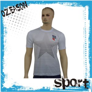 Wholesale Cheap Custom Polyester Blank Dri Fit T-Shirts (T001) pictures & photos