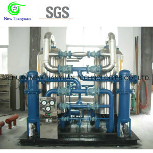 10MPa Working Pressure CNG Natural Gas Dehydration/Drying Unit pictures & photos