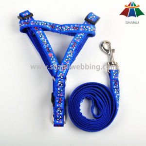 Hot-Sale High-Quality Printed Cartton Style 15mm Polyester/Nylon Leash & Adjustable Harness pictures & photos
