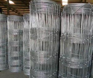 Hot Dipped Galvnized Farm Fence/Sheep Fence Wire pictures & photos
