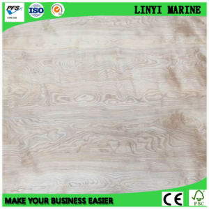 Natural Birch Face Plywood Poplar Core Plywood Furniture Grade Plywood pictures & photos