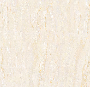 Hot Sales Building Material Navona Polished Tile (FN6003) pictures & photos