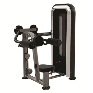 Good Sales Bodytone Fitness Equipment Lateral Raise (SC19) pictures & photos