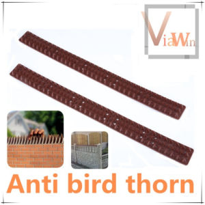 Gardening Guard Against Bird Thorn (V16003)