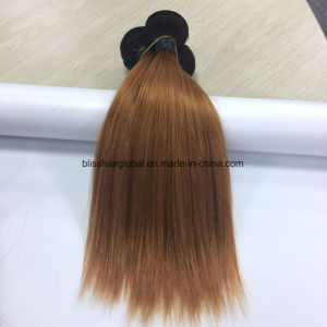 Brazilian Virgin Hair Ombre Color 10 Inch Ot1b-30 Straight Bliss pictures & photos
