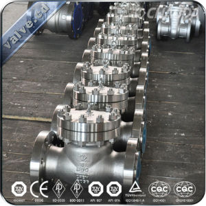 API Steel Cryogenic Check Valve pictures & photos