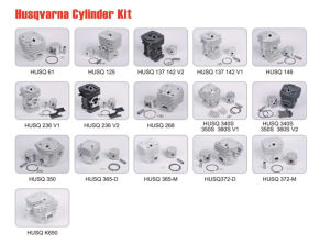 Chainsaw Spare Parts for Cylinder Kits (K650) pictures & photos