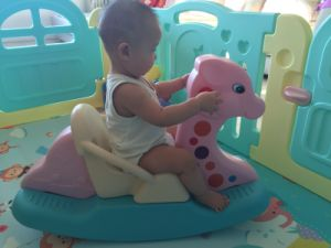 2017 Indoor Plastic Rocking Horse Rider Toys for Baby (HBS17015B) pictures & photos