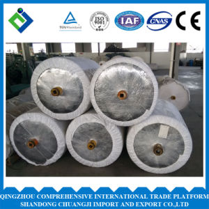 Diped Polyester Tire Cord Fabric for Conveyor Belts pictures & photos