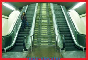 Cheap Escalator - 30 Degree/35 Degree - Indoor & Outdoor Use pictures & photos