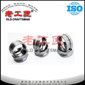High Precision Hot-Sale Tungsten Carbide Wire Guide Dies pictures & photos