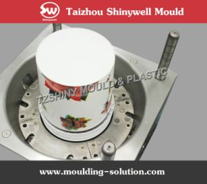 Iml Painting Bucket Mould