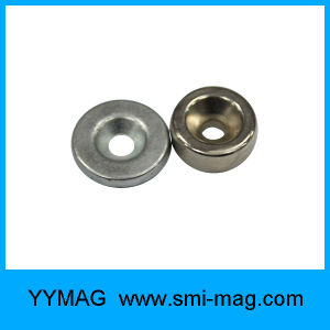 High Coercive Force NdFeB Permanent Neodymium Ring Magnet pictures & photos