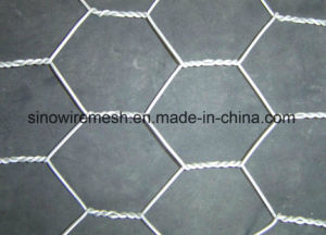 Hex Plaster Chicken Wire Mesh pictures & photos