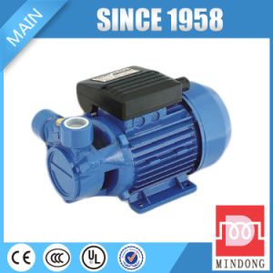 Lq100 Series 0.5HP/0.37kw Peripheral Pump for Sale pictures & photos