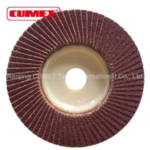 """Flap Disc Plastic 115mm X 22mm (4-1/2"""" X 7/8"""") pictures & photos"""