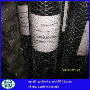Dirrectly Factory Price Galvanized Hexagonal Wire Mesh pictures & photos