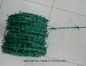 Electro Galvanized Barbed Iron Wire (XA-BW4) pictures & photos
