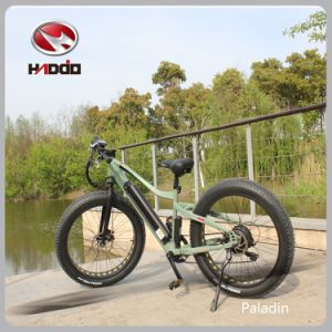 48V 10ah Fat Tire Ebike Electric Beach Bicycle for Adult pictures & photos