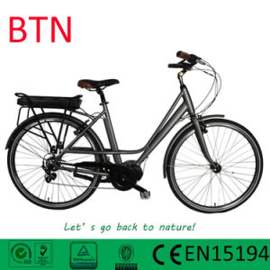 OEM Manufacture Pedelec City Ebikes with Rear Rack Li-Battery pictures & photos