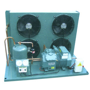 25 HP Condensing Unit for Cold Stores Installation, Condensing Unit pictures & photos