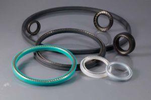 Peek Material Spring Energized Seals for Single-Liquid Two-Liquid Vacuum V-Type Dispenser Spring Seals pictures & photos